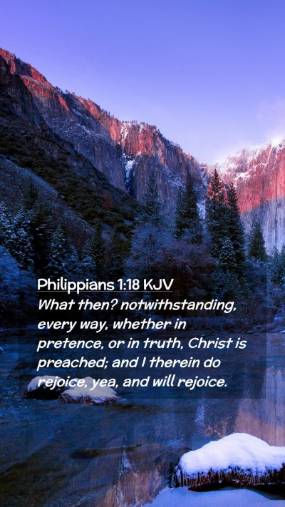 Picture 02 - Philippians 1:18 KJV Mobile Phone Wallpaper - What then? notwithstanding, every way, whether in - Mobile Bible Verse Wallpaper