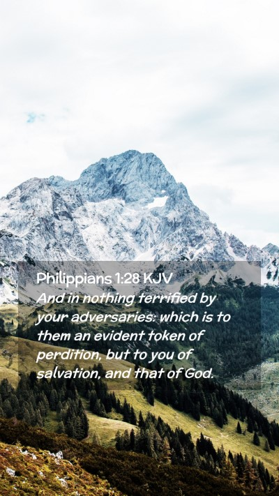 Picture 02 - Philippians 1:28 KJV Mobile Phone Wallpaper - And in nothing terrified by your adversaries: - Mobile Bible Verse Wallpaper