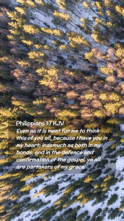 Picture 02 - Philippians 1:7 KJV Mobile Phone Wallpaper - Even as it is meet for me to think this of you - Mobile Bible Verse Wallpaper