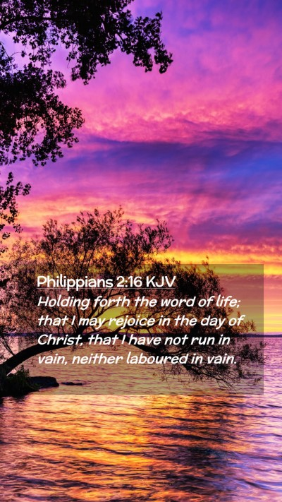 Picture 02 - Philippians 2:16 KJV Mobile Phone Wallpaper - Holding forth the word of life; that I may - Mobile Bible Verse Wallpaper