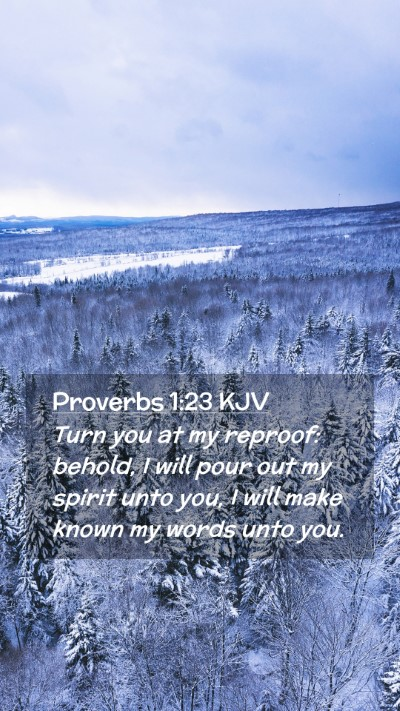 Picture 02 - Proverbs 1:23 KJV Mobile Phone Wallpaper - Turn you at my reproof: behold, I will pour out - Mobile Bible Verse Wallpaper