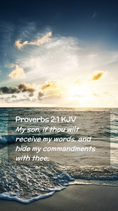 Picture 02 - Proverbs 2:1 KJV Mobile Phone Wallpaper - My son, if thou wilt receive my words, and hide - Mobile Bible Verse Wallpaper