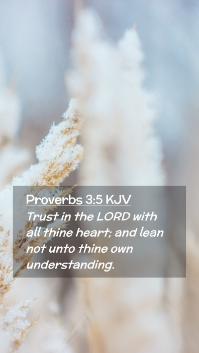 Picture 02 - Proverbs 3:5 KJV Mobile Phone Wallpaper - Trust in the LORD with all thine heart; and lean - Mobile Bible Verse Wallpaper