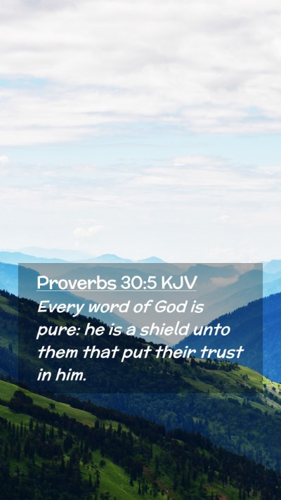 Picture 02 - Proverbs 30:5 KJV Mobile Phone Wallpaper - Every word of God is pure: he is a shield unto - Mobile Bible Verse Wallpaper