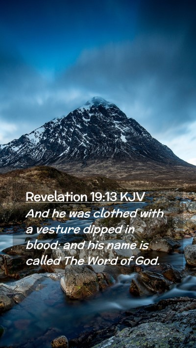 Picture 02 - Revelation 19:13 KJV Mobile Phone Wallpaper - And he was clothed with a vesture dipped in - Mobile Bible Verse Wallpaper