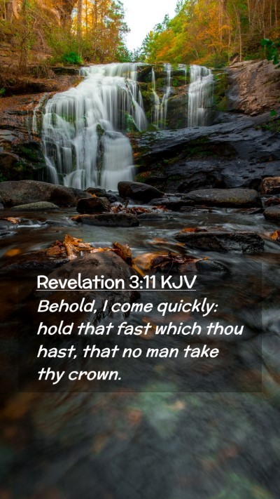 Picture 02 - Revelation 3:11 KJV Mobile Phone Wallpaper - Behold, I come quickly: hold that fast which thou - Mobile Bible Verse Wallpaper