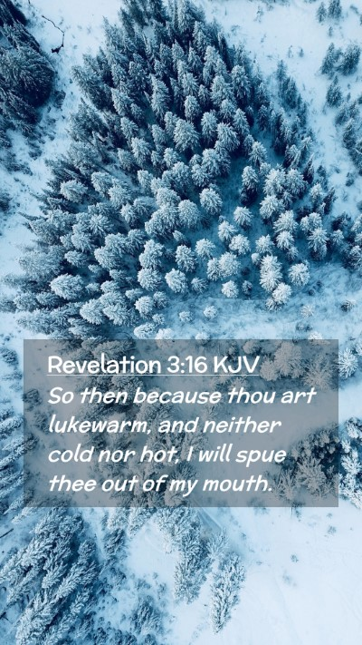 Picture 02 - Revelation 3:16 KJV Mobile Phone Wallpaper - So then because thou art lukewarm, and neither - Mobile Bible Verse Wallpaper