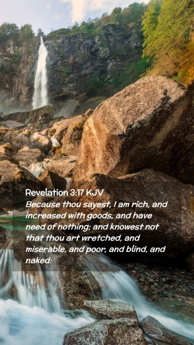 Picture 02 - Revelation 3:17 KJV Mobile Phone Wallpaper - Because thou sayest, I am rich, and increased - Mobile Bible Verse Wallpaper