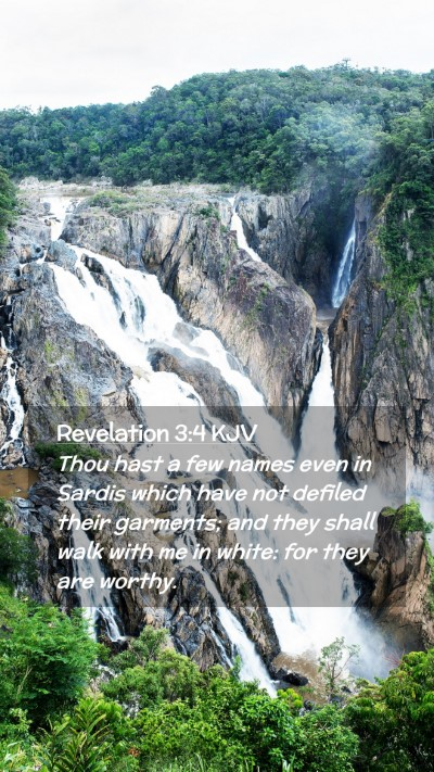 Picture 02 - Revelation 3:4 KJV Mobile Phone Wallpaper - Thou hast a few names even in Sardis which have - Mobile Bible Verse Wallpaper