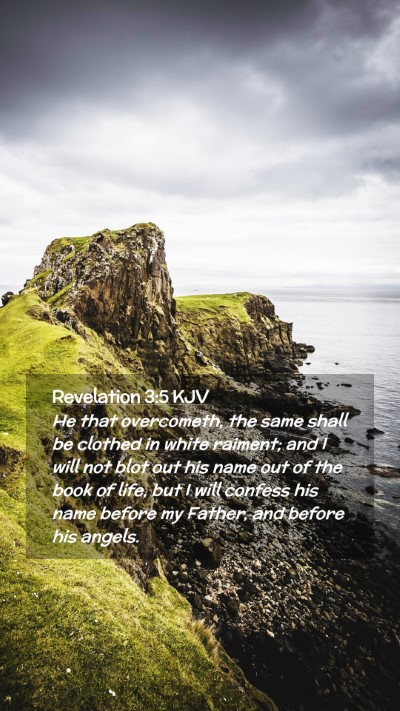 Picture 02 - Revelation 3:5 KJV Mobile Phone Wallpaper - He that overcometh, the same shall be clothed in - Mobile Bible Verse Wallpaper