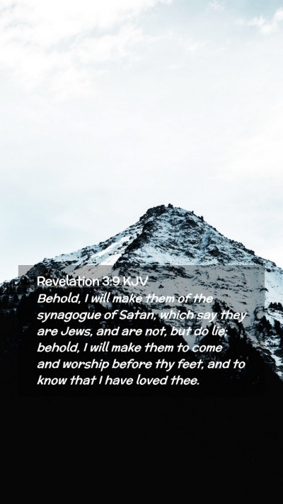 Picture 02 - Revelation 3:9 KJV Mobile Phone Wallpaper - Behold, I will make them of the synagogue of - Mobile Bible Verse Wallpaper