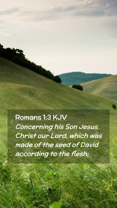 Picture 02 - Romans 1:3 KJV Mobile Phone Wallpaper - Concerning his Son Jesus Christ our Lord, which - Mobile Bible Verse Wallpaper