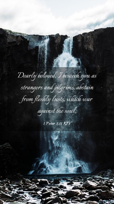 Picture 03 - 1 Peter 2:11 KJV Mobile Phone Wallpaper - Dearly beloved, I beseech you as strangers and - Mobile Bible Verse Wallpaper