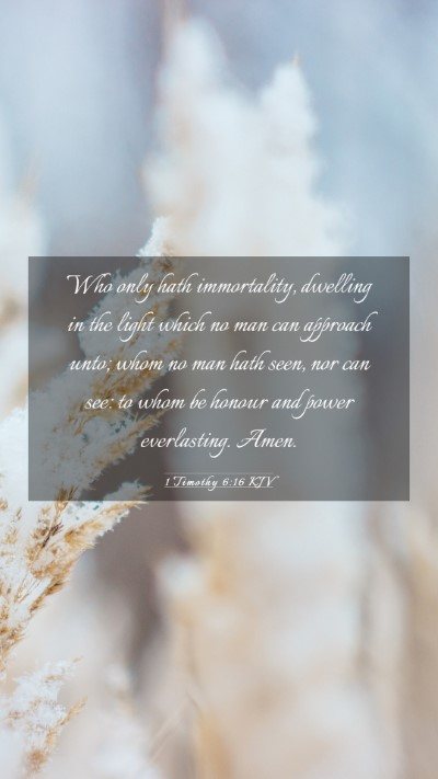 Picture 03 - 1 Timothy 6:16 KJV Mobile Phone Wallpaper - Who only hath immortality, dwelling in the light - Mobile Bible Verse Wallpaper