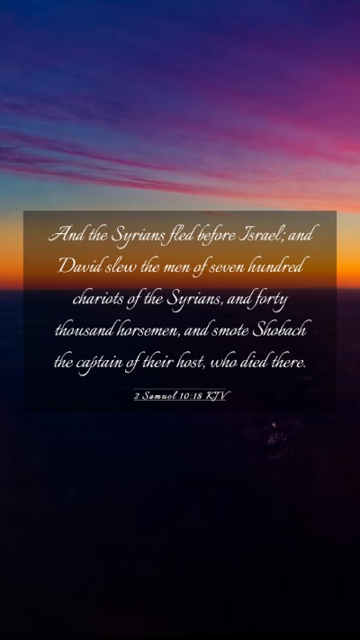 Picture 03 - 2 Samuel 10:18 KJV Mobile Phone Wallpaper - And the Syrians fled before Israel; and David - Mobile Bible Verse Wallpaper