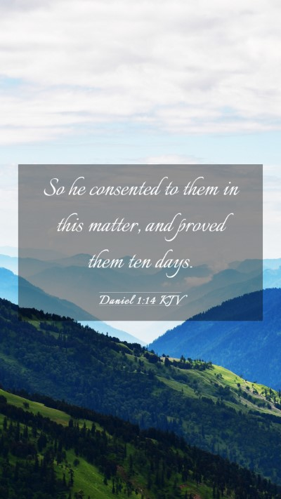 Picture 03 - Daniel 1:14 KJV Mobile Phone Wallpaper - So he consented to them in this matter, and - Mobile Bible Verse Wallpaper