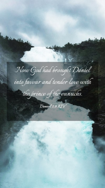 Picture 03 - Daniel 1:9 KJV Mobile Phone Wallpaper - Now God had brought Daniel into favour and tender - Mobile Bible Verse Wallpaper