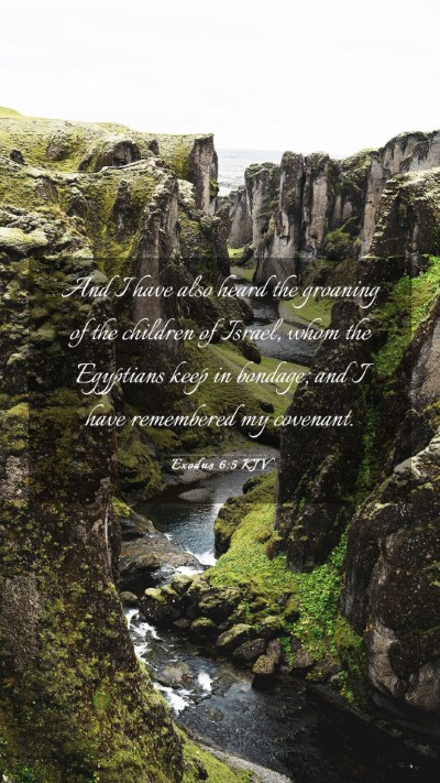 Picture 03 - Exodus 6:5 KJV Mobile Phone Wallpaper - And I have also heard the groaning of the - Mobile Bible Verse Wallpaper