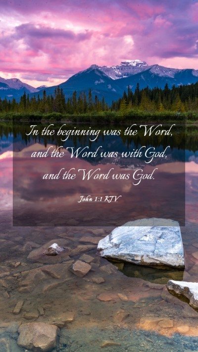Picture 03 - John 1:1 KJV Mobile Phone Wallpaper - In the beginning was the Word, and the Word was - Mobile Bible Verse Wallpaper