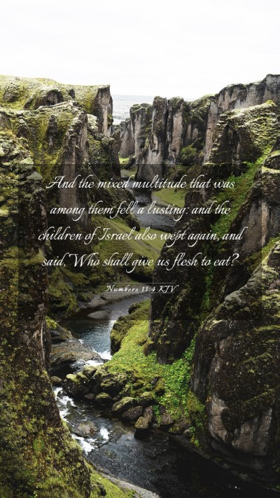 Picture 03 - Numbers 11:4 KJV Mobile Phone Wallpaper - And the mixed multitude that was among them fell - Mobile Bible Verse Wallpaper