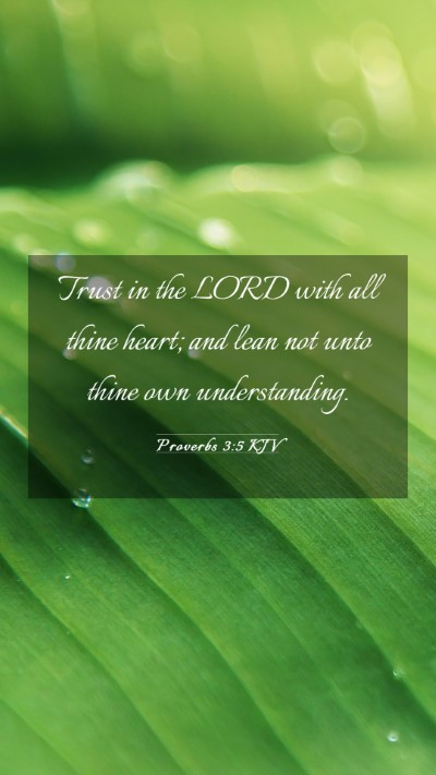 Picture 03 - Proverbs 3:5 KJV Mobile Phone Wallpaper - Trust in the LORD with all thine heart; and lean - Mobile Bible Verse Wallpaper