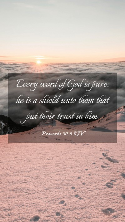 Picture 03 - Proverbs 30:5 KJV Mobile Phone Wallpaper - Every word of God is pure: he is a shield unto - Mobile Bible Verse Wallpaper