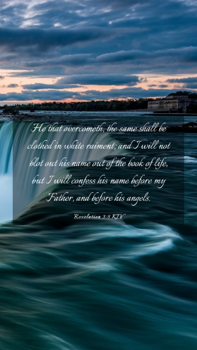 Picture 03 - Revelation 3:5 KJV Mobile Phone Wallpaper - He that overcometh, the same shall be clothed in - Mobile Bible Verse Wallpaper