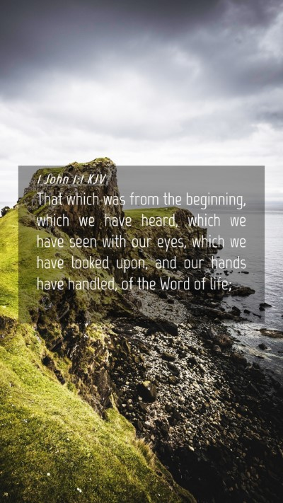 Picture 04 - 1 John 1:1 KJV Mobile Phone Wallpaper - That which was from the beginning, which we have - Mobile Bible Verse Wallpaper