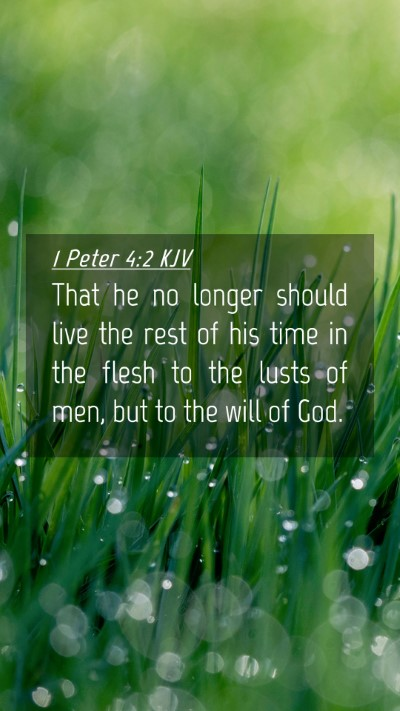 Picture 04 - 1 Peter 4:2 KJV Mobile Phone Wallpaper - That he no longer should live the rest of his - Mobile Bible Verse Wallpaper