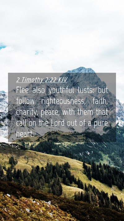 Picture 04 - 2 Timothy 2:22 KJV Mobile Phone Wallpaper - Flee also youthful lusts: but follow - Mobile Bible Verse Wallpaper