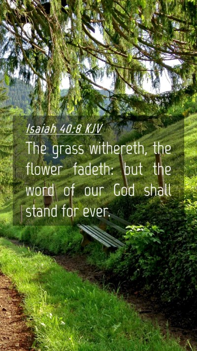 Picture 04 - Isaiah 40:8 KJV Mobile Phone Wallpaper - The grass withereth, the flower fadeth: but the - Mobile Bible Verse Wallpaper