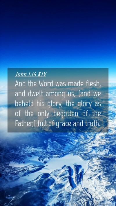 Picture 04 - John 1:14 KJV Mobile Phone Wallpaper - And the Word was made flesh, and dwelt among us, - Mobile Bible Verse Wallpaper