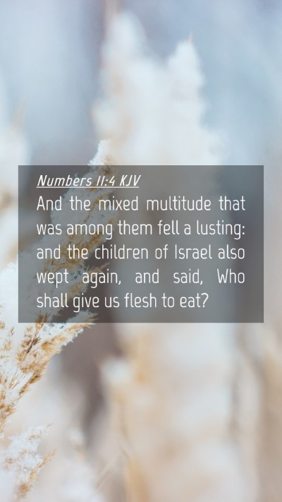 Picture 04 - Numbers 11:4 KJV Mobile Phone Wallpaper - And the mixed multitude that was among them fell - Mobile Bible Verse Wallpaper