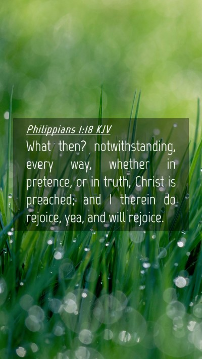 Picture 04 - Philippians 1:18 KJV Mobile Phone Wallpaper - What then? notwithstanding, every way, whether in - Mobile Bible Verse Wallpaper