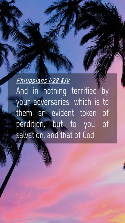 Picture 04 - Philippians 1:28 KJV Mobile Phone Wallpaper - And in nothing terrified by your adversaries: - Mobile Bible Verse Wallpaper