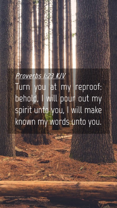 Picture 04 - Proverbs 1:23 KJV Mobile Phone Wallpaper - Turn you at my reproof: behold, I will pour out - Mobile Bible Verse Wallpaper