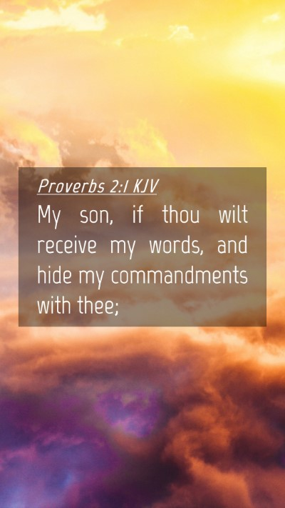 Picture 04 - Proverbs 2:1 KJV Mobile Phone Wallpaper - My son, if thou wilt receive my words, and hide - Mobile Bible Verse Wallpaper