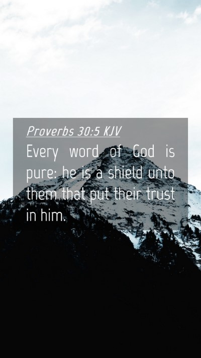 Picture 04 - Proverbs 30:5 KJV Mobile Phone Wallpaper - Every word of God is pure: he is a shield unto - Mobile Bible Verse Wallpaper