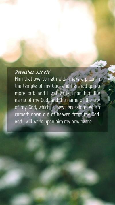 Picture 04 - Revelation 3:12 KJV Mobile Phone Wallpaper - Him that overcometh will I make a pillar in the - Mobile Bible Verse Wallpaper