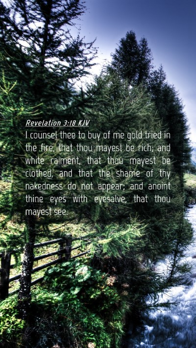 Picture 04 - Revelation 3:18 KJV Mobile Phone Wallpaper - I counsel thee to buy of me gold tried in the - Mobile Bible Verse Wallpaper