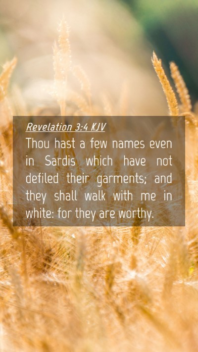 Picture 04 - Revelation 3:4 KJV Mobile Phone Wallpaper - Thou hast a few names even in Sardis which have - Mobile Bible Verse Wallpaper