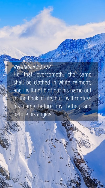 Picture 04 - Revelation 3:5 KJV Mobile Phone Wallpaper - He that overcometh, the same shall be clothed in - Mobile Bible Verse Wallpaper