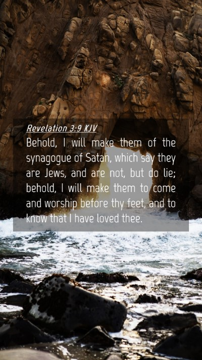 Picture 04 - Revelation 3:9 KJV Mobile Phone Wallpaper - Behold, I will make them of the synagogue of - Mobile Bible Verse Wallpaper