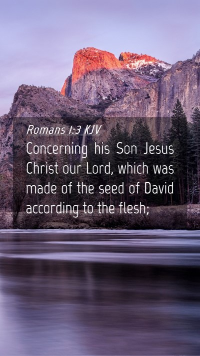 Picture 04 - Romans 1:3 KJV Mobile Phone Wallpaper - Concerning his Son Jesus Christ our Lord, which - Mobile Bible Verse Wallpaper