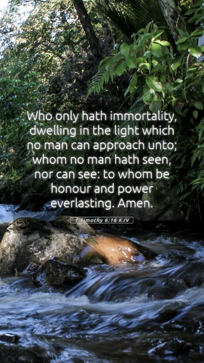 Picture 05 - 1 Timothy 6:16 KJV Mobile Phone Wallpaper - Who only hath immortality, dwelling in the light - Mobile Bible Verse Wallpaper