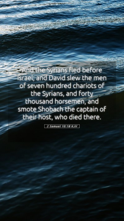 Picture 05 - 2 Samuel 10:18 KJV Mobile Phone Wallpaper - And the Syrians fled before Israel; and David - Mobile Bible Verse Wallpaper
