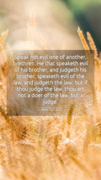 Picture 05 - James 4:11 KJV Mobile Phone Wallpaper - Speak not evil one of another, brethren. He that - Mobile Bible Verse Wallpaper
