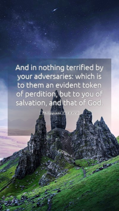 Picture 05 - Philippians 1:28 KJV Mobile Phone Wallpaper - And in nothing terrified by your adversaries: - Mobile Bible Verse Wallpaper
