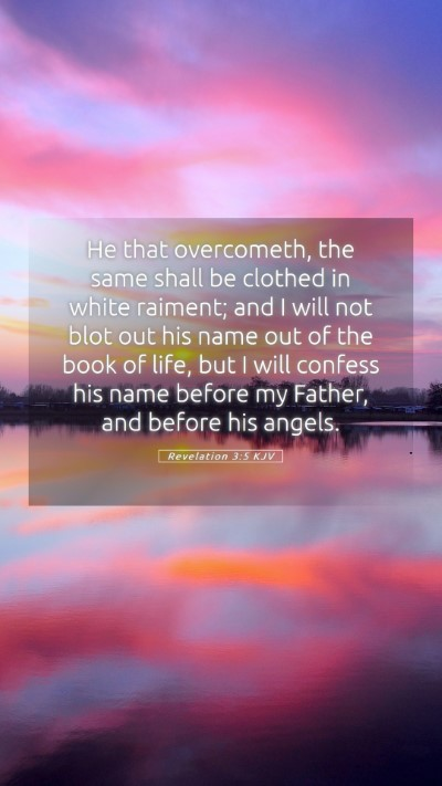 Picture 05 - Revelation 3:5 KJV Mobile Phone Wallpaper - He that overcometh, the same shall be clothed in - Mobile Bible Verse Wallpaper