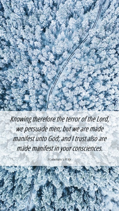 Picture 06 - 2 Corinthians 5:11 KJV Mobile Phone Wallpaper - Knowing therefore the terror of the Lord, we - Mobile Bible Verse Wallpaper